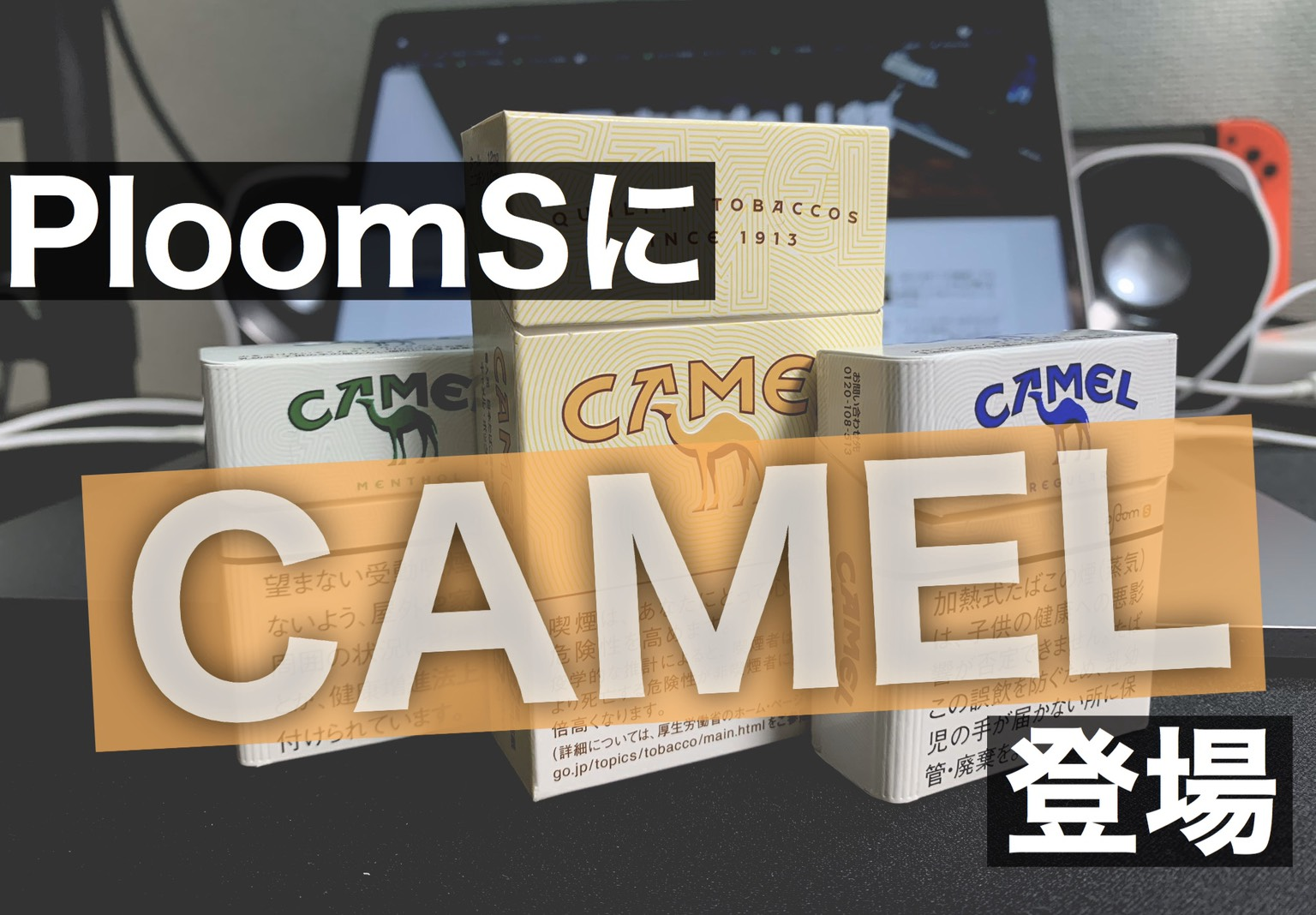 s-camel-stick-all-review eye catch